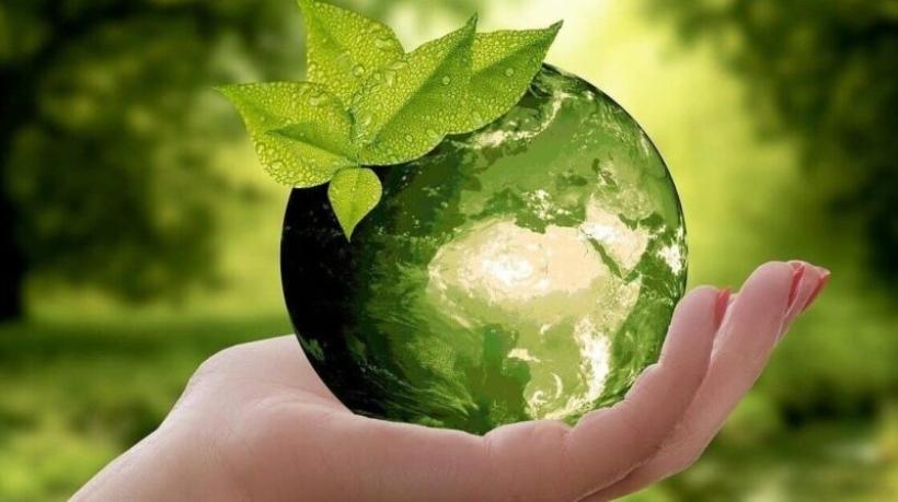 logistica-verde-planet